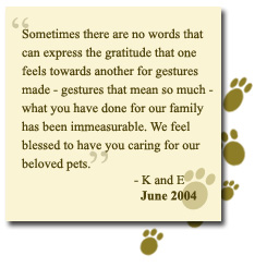 Loss Of A Pet Quote Extraordinary Pet Friends